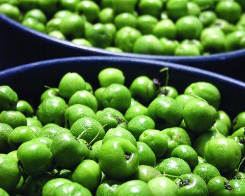 Acerola Acerba Verde